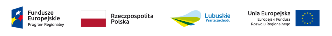Logo UE i parnerów UE